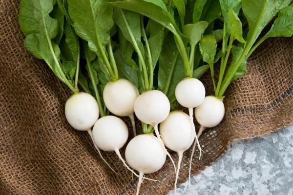 10 bài thuốc hiệu quả từ củ cải trắng