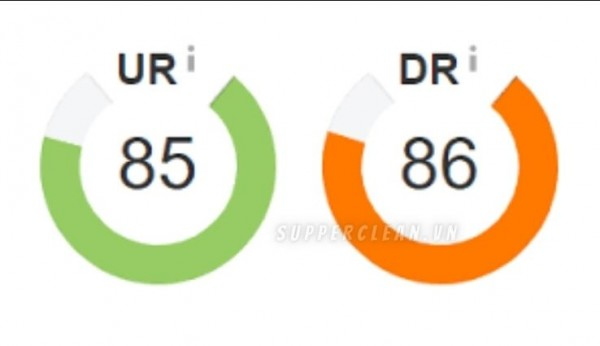 300+ link giúp tăng chỉ số UR và DR cho website