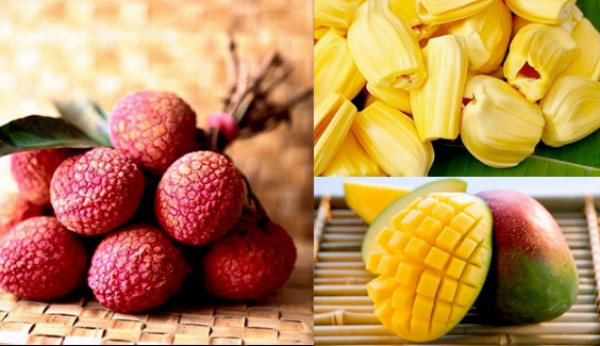 Ăn nhiều hoa quả không đúng cách sẽ bị thừa cân, béo phì