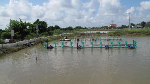 Áp dụng nhiều biện pháp tiết kiệm điện trong nuôi tôm