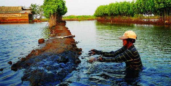 Bão lũ là một phần nguyên nhân gây nên ô nhiễm nước