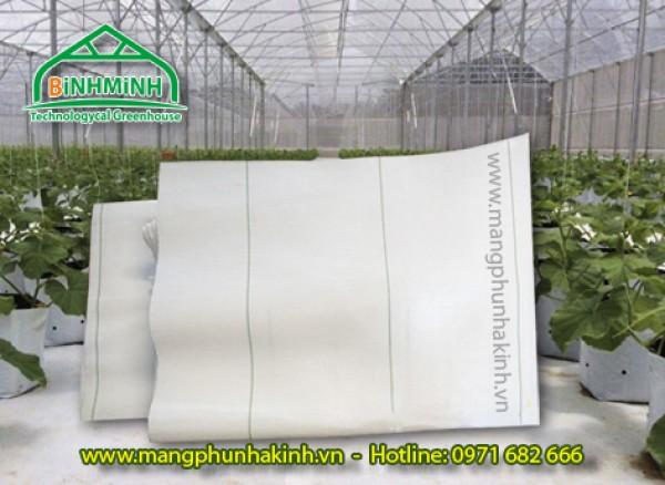 Bạt địa nhà kính, bạt địa nhà màng, bạt trải nền nhà trồng dưa lưới, tấm lót nền