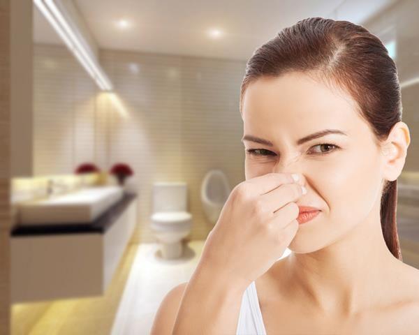 Bí quyết khử mùi các phòng trong nhà