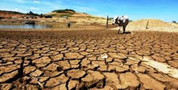 Biến đổi khí hậu do sự tác động nghiêm trọng của con người