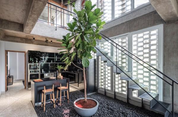 Biện pháp lấy sáng tự nhiên cho căn hộ