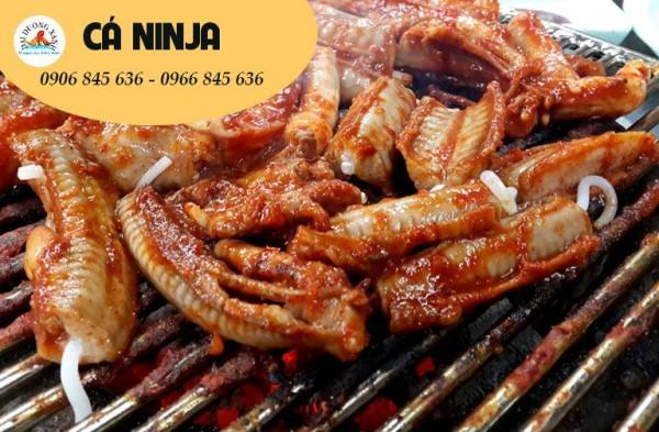 Cá mút đá(cá ninja) là cá gì? Mua ở đâu? ✅