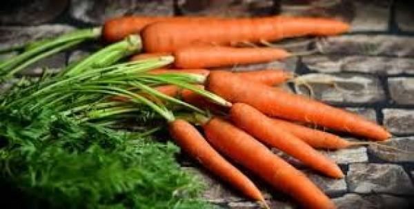 Cà rốt có thể là một món ăn hoàn hảo