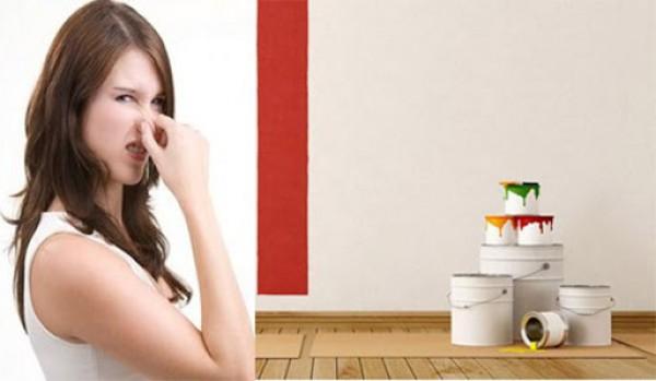 Cách khử mùi nhà mới xây bằng những nguyên liệu tự nhiên