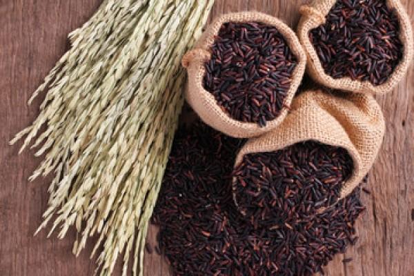 Cách nấu gạo lứt đen giữ trọn hương vị