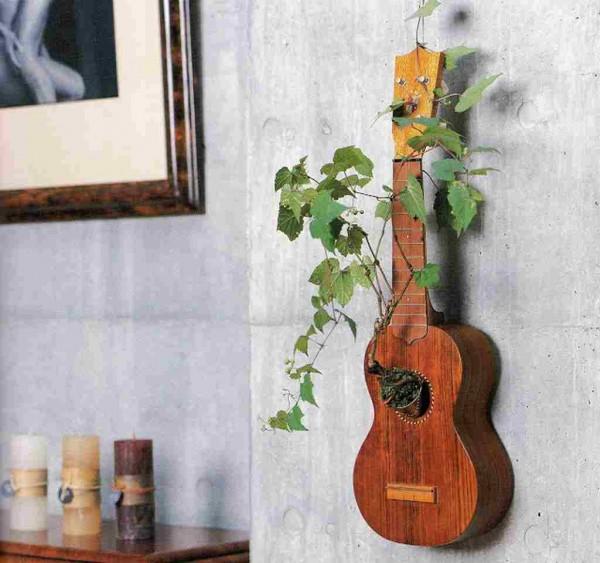 Cách trồng cây trang trí đặc biệt