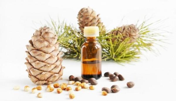 Cải thiện sức khỏe nhờ tinh dầu tuyết tùng