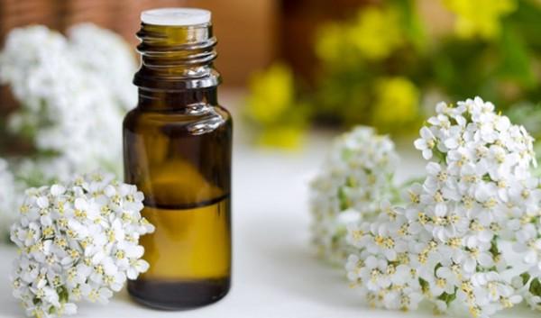 Cải thiện triệu chứng giãn tĩnh mạch nhờ tinh dầu
