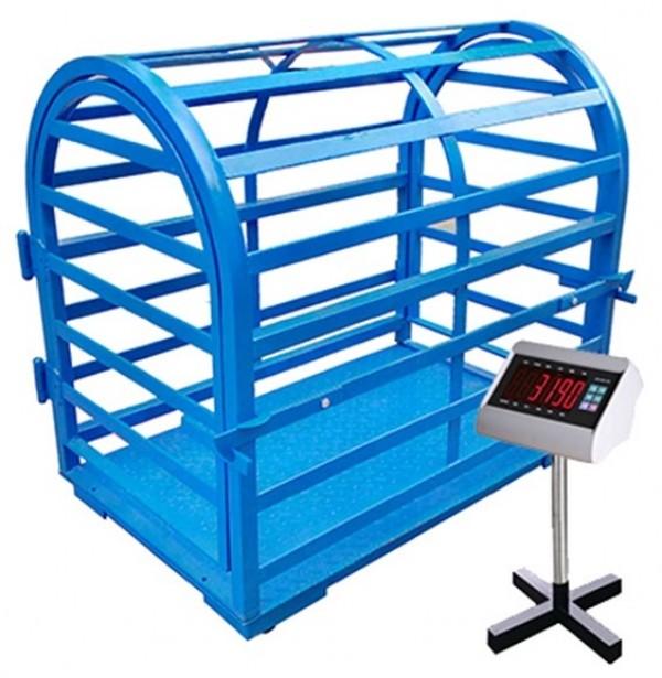 Cân Heo diện Tử 300kg - 500kg