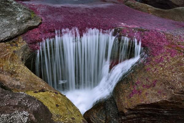 Cảnh tượng thiên nhiên đầy sắc màu như thôi miên du khách