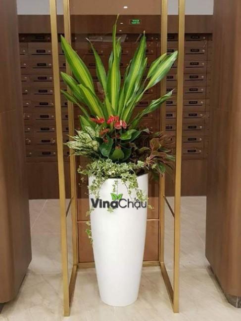 Chia sẻ chậu trồng cây Composite đến từ Vinapot