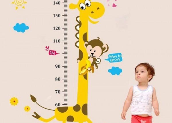 Chiều cao của con người không chỉ thể hiện ở tầm vóc bên ngoài