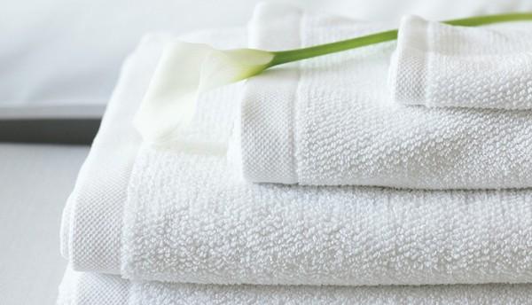 Có cách nào khử mùi sạch hoàn toàn mà lại không hề tốn kém?