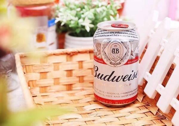 Đại lý chính thức, nhà phân phối bia Budweiser giá rẻ nhất Miền Bắc