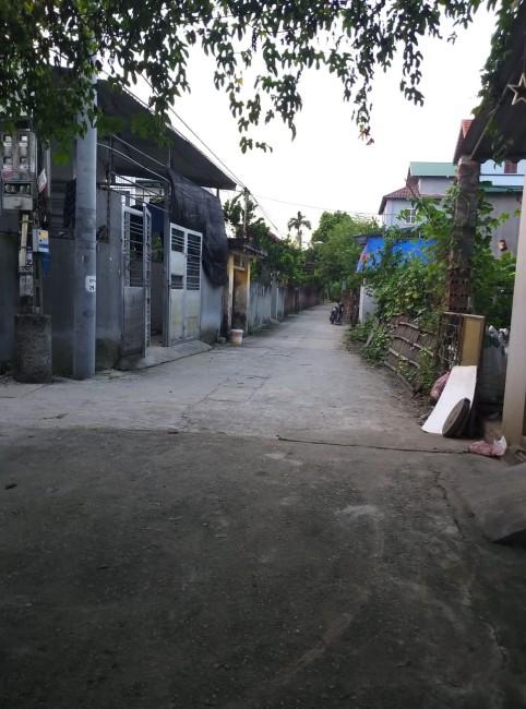 Đất Đào Xuyên, Đa Tốn ô tô 7 chỗ vào tận nhà, giá chưa đến 21tr/m2.