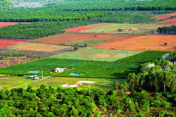 Đất Hòa Thắng - Bắc Bình - Bình Thuận