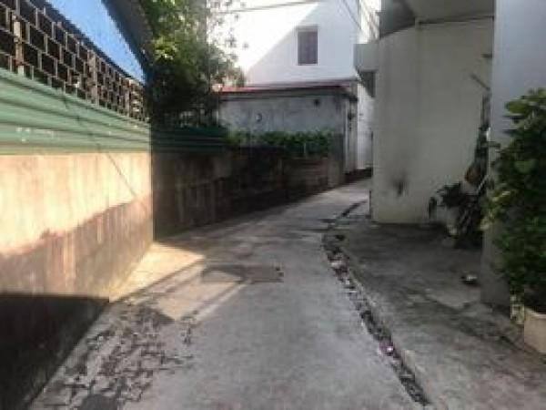 Đất trong đê Đông Dư, Gia Lâm, lô góc, cách mặt đê 20m ô tô 7 chỗ vào nhà.