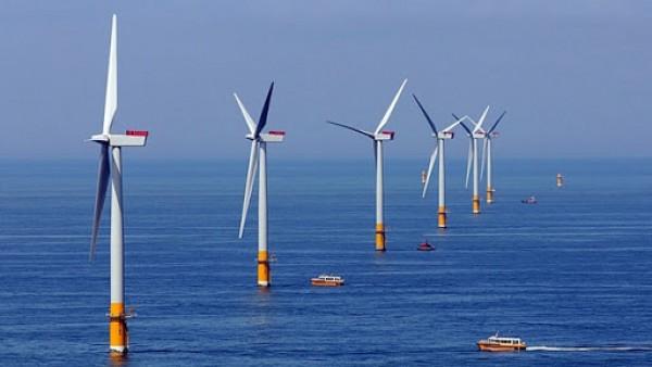 EVN tổ chức Hội nghị triển khai các dự án điện gió tại Việt Nam