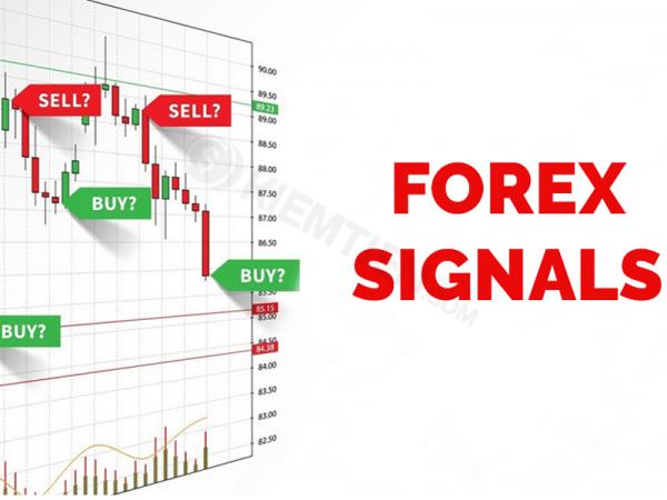 Forex signal là gì? Các loại dịch vụ cung cấp tín hiệu forex
