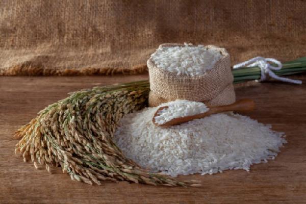 Gạo Việt Nam ngon nhất thế giới ST25 đủ tiêu chuẩn xuất khẩu