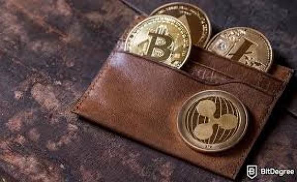 Giá bitcoin có thể tăng lên 1 triệu USD trong dài hạn và trở thành đồng tiền dự trữ của thế giới.