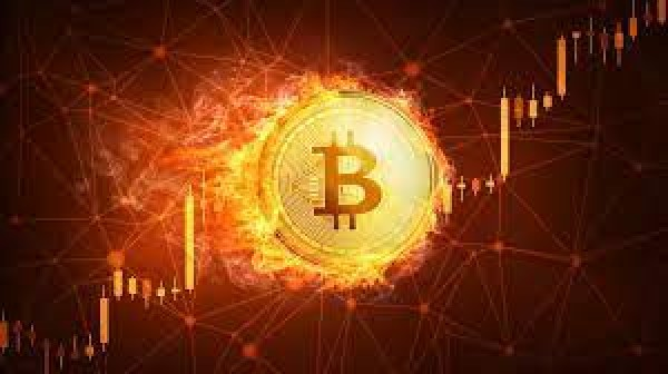 Giá Bitcoin ngày 13/5: Rơi tự do, xuống mức 50.000 USD
