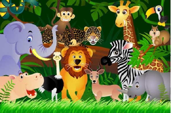 Giải mã giấc mơ thấy động vật một cách chính xác nhất!