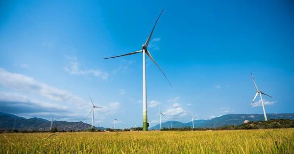 Giải pháp đẩy nhanh tiến độ giải tỏa công suất các dự án điện gió