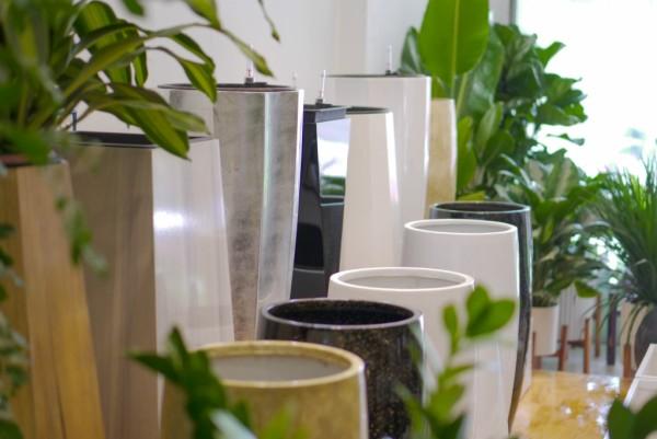 Giới thiệu chậu trồng cây Composite đến từ Vinapot