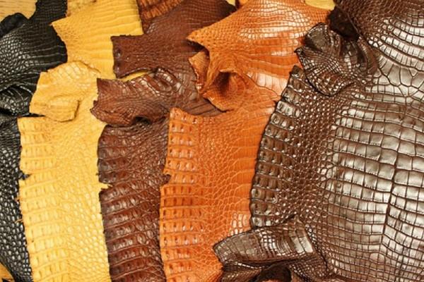Kiến thức phân biệt da cá sấu