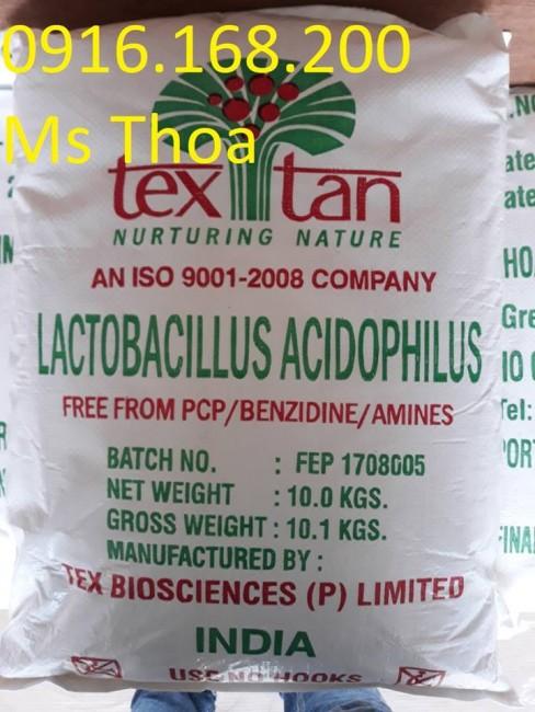 Lactobacillus Acidophilus: Men đường ruột đậm đặc