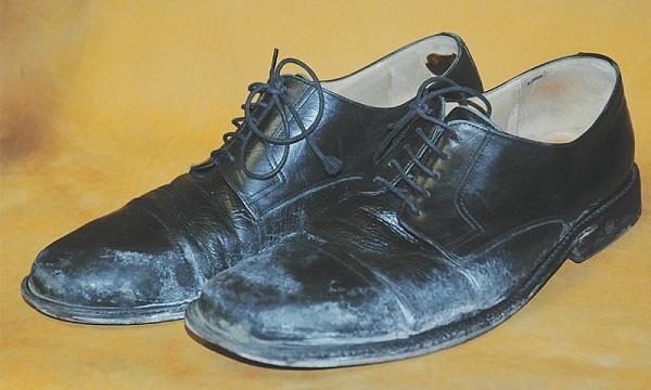 Làm gì khi đôi giày da đặt tiền của bạn bị mốc?
