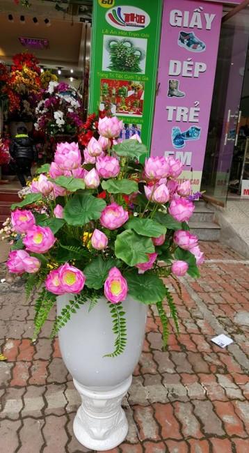 Lợi ích của hoa hoa