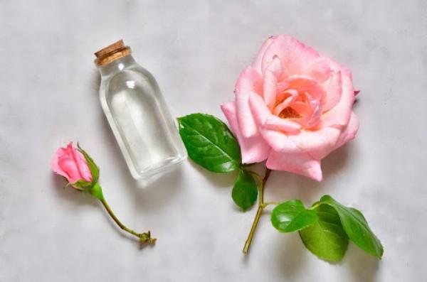 Lời khuyên hữu ích khi sử dụng nước hoa hồng cho da mặt