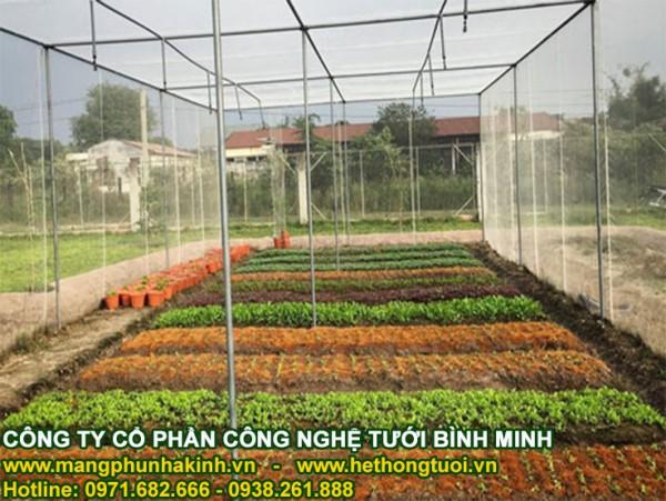Lưới chắn côn trùng politiv, nhà lưới nông nghiệp