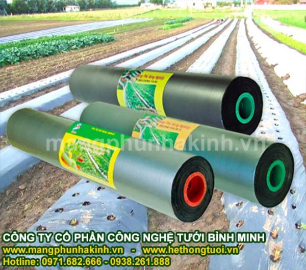 màng phủ nông nghiệp, đại lý cung cấp màng phủ nông nghiệp, cách sử dụng  màng phủ nông nghiệp