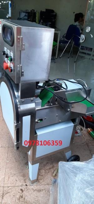 Máy thái lát, máy thái khúc rau lá, máy thái sả cây công nghiệp SH125
