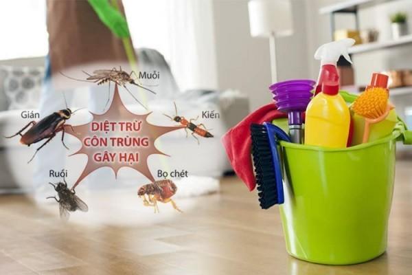 Mẹo đuổi côn trùng bằng các vật dụng trong nhà hiệu quả