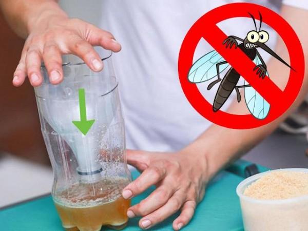 Mẹo đuổi muỗi vô cùng hữu hiệu