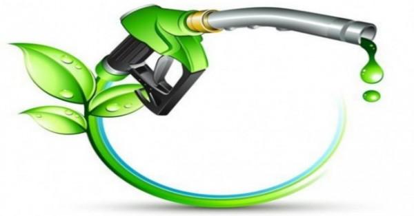 Một số kết quả của quá trình nghiên cứu nhiên liệu sinh học