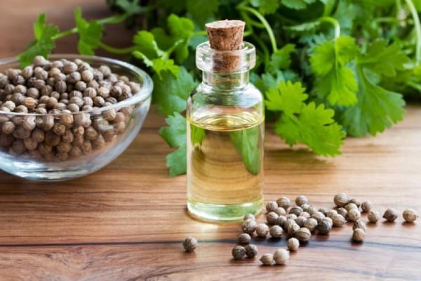 Một số loại tinh dầu hiệu quả trong điều trị đái tháo đường
