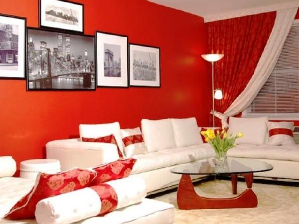 Ngôi nhà áp dụng những sắc màu thú vị và gây ấn tượng mạnh