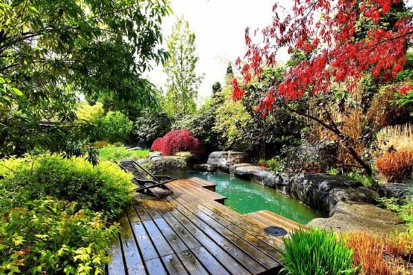 Nhà vườn ao cá gần gũi với thiên nhiên
