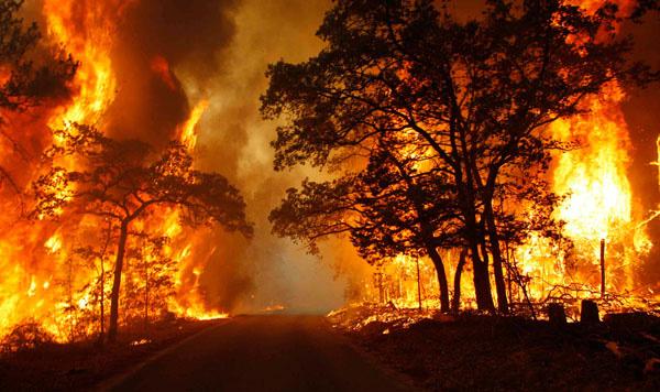 Nhiều hiểm nguy hơn từ hệ quả của việc biến đổi khí hậu