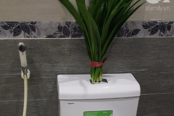 Những cách khử mùi hôi nhà vệ sinh hiệu quả
