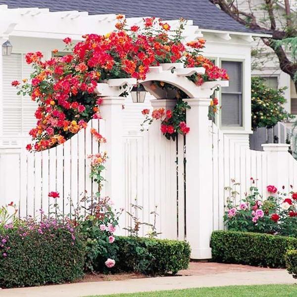Những cánh cổng hoa làm đẹp cho ngôi nhà